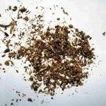 Herbe cannabis vaporisée