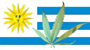 L'Uruguay est le premier pays au monde à légaliser le cannabis