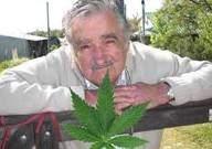 President de l'Uruguay José Mujica est en faveur du cannabis