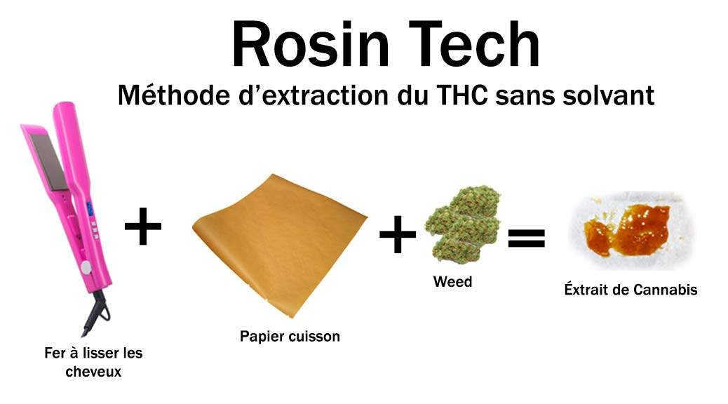 Rosin Tech Explications Techniques méthode d'extraction Cannabinoïdes