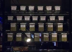 Le Hunter's Coffeeshop a perdu sa licence de vente de Cannabis