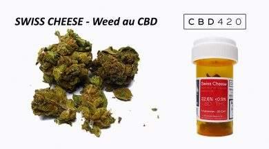 Avis sur la Weed Swiss Cheese CBD